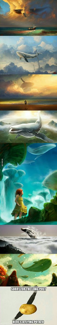 There's something about flying whales that seem so magical... - 9GAG