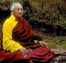 """""""Be like a lion, who rather than chasing after the stick, turns to face the thrower. One only throws a stick at a lion once."""" ~ H.H. Dilgo Khyentse Rinpoche"""
