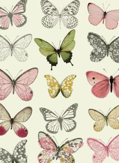 All about surface pattern ,textiles and graphics wallpaper? Motifs Textiles, Textile Patterns, Decoupage, Pattern Illustration, Butterfly Illustration, Pretty Patterns, Grafik Design, Surface Pattern Design, Beautiful Butterflies