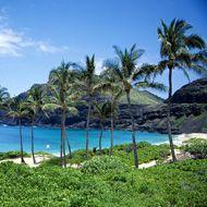 marrying in hawaii - how to plan a hawaii wedding