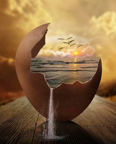 It must have all started somewhere. Photos of Our Word in Surrealism. Click the image, for more art by Natacha Einat Formation Photo, Surreal Artwork, Surrealism Painting, Surrealism Photography, Egg Art, Arte Pop, Photomontage, Creative Photography, Amazing Art