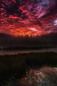 Sunrise at Algonquin (Canada) // Daniel Parent