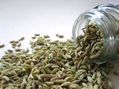 Fennel seeds offer a wide range of nutritional properties that help in improving the well-being of a person. Tap to know more. Home Remedies For Gas, Gas Remedies, Natural Remedies, Benefits Of Fennel, Health Benefits, Fennel Essential Oil, Essential Oils, Bebidas Detox, Foeniculum Vulgare