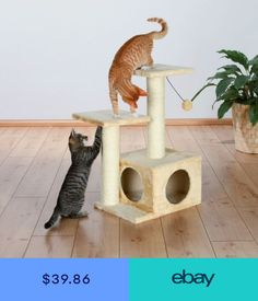 Trixie Pet Products Valencia scratching post, 71 cm, beige - 43771 Cat Tree NEW