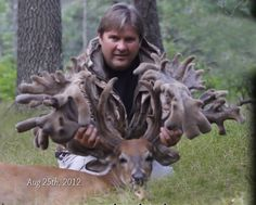 Gallery of Monster Bucks   ... 547 inches, then this Apple Creek buck will be the new world record