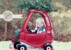 little car driver with Christmas tree; would make a cute Christmas card photo