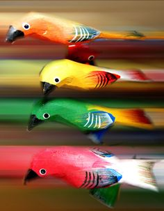 quiosque de artes no Magic City....passarinhos multi coloridos...foto tirada com o efeito desfocagem com velocidade...beijao pra todos do Face..