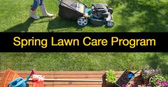 Summary: Spring lawn care maintenance is key to a great looking green yard in the summer. Applying lawn fertilizer, reseeding, watering, mowing, killing weeds and promoting optimum growing conditions pay off in the coming months. Get started today on your spring lawn care plan. Question: To have a lush looking beautiful lawn in tip-top shape …