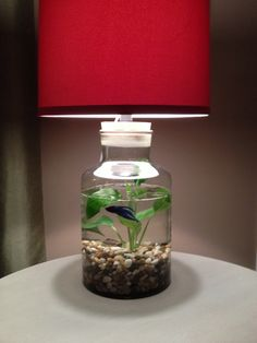 Idea for a fillable lamp!