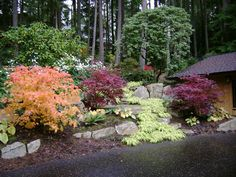 Pacific Northwest Landscaping Ideas | traditional landscape by Cambium Inc.