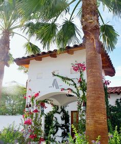 Alcazar Palm Springs Resort  - Boutique, Luxury Hotel Reservations