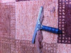 Un truc ultra efficace pour nettoyer les tapis des poils d'animaux : le lave-vitres !