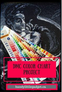 How-to video of how to turn a printed DMC color chart for embroidery floss into a color strip for easy design and stitching work. Embroidery Floss Storage, Dmc Embroidery Floss, Machine Embroidery, Paint Color Chart, Paint Colors, Diamond Paint, Cross Stitching, Simple Designs, Needlepoint