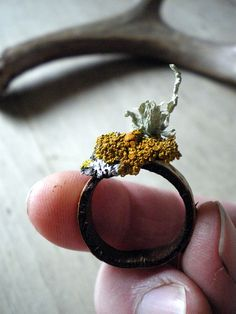 LISA JORDAN a ring of birch and lichens via @daily planet Poetics // Kariann Blank that is a work of art work  wearing ;)