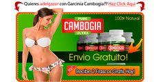 Ser Garcinia Cambogia | Secretos del fruto Garcinia Cambogia