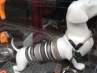 Dog mannequin showcases various dog collars. We sell dog mannequins at MannequinMadness.com