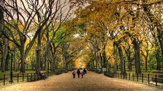 Central Park Wallpapers - Wallpaper Cave