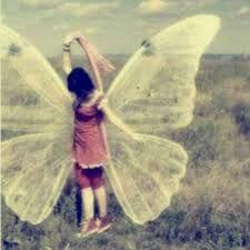 Resultado de imagem para tumblr borboleta
