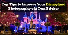 Tips to Improve Your Disneyland Photos With Tom Bricker of the Disney Tourist Blog–DD005
