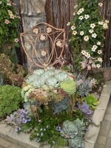 I've seen a lot of succulent chairs, but this one, planted among succulents, is one of the best!