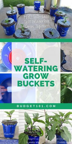 5ca007a0c0d7a dirt cheap self watering grow buckets Hydroponic Grow Systems, Hydroponic Farming, Hydroponic Growing, Aquaponics Diy, Hydroponics System, Permaculture, Homemade Hydroponic System, Indoor Hydroponics, Hydroponic Plants