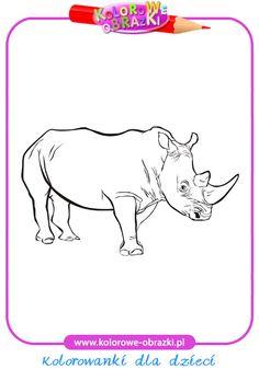 Nosorożec - Kolorowanki zwierzęta
