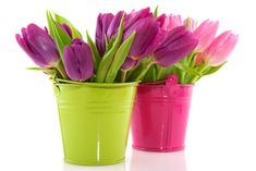 I love tulips, and the bright colors are awesome for an Easter decoration idea.  This would also be great for outdoor table decorations if you are having a spring barbeque.  You could even vary the colors or flowers.