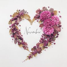 November 2 2018 ・ ・ ・ Happy new month everyone🍁 ・ November heart for you😙 ・ Love this beautiful aster🌸 ・ ・ ・ 改めて今月もよろしくお願いします🤲 ・……Идеи контента времена года/ осень