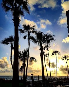 Golden sunsets at #RosaritoBeach!😁#FelizLunes #HappyMonday #BajaCalifornia #EnjoyBaja #Sunset #Atardecer #Summer #Verano 📸janellerivera15 #love #instagood #photooftheday #tbt #beautiful #cute #me #happy #fashion #followme #follow #selfie #picoftheday #summer #friends #instadaily #girl #fun #tagforlikes #smile #PassportReady #ISeeFaces #RTW #TTOT #TravelAddict  #SinFiltros #NoFilter #BajaCalifornia #DiscoverBaja #DescubreBC #EnjoyBaja #DisfrutaBC #ILoveBaja #AmoBC #Amor #Viajes #Viaje #Trip…