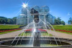 O Jardim Botânico de Curitiba ou Jardim Botânico Francisca Maria Garfunkel Richbieter, presta uma homenagem à urbanista Francisca Maria Garfunkel Rischbieter (uma das pioneiras no trabalho de planejamento urbano da capital paranaense) e é um dos principais pontos turísticos da cidade de Curitiba, capital do Paraná. Inaugurado em 5 de outubro de 1991, o jardim contém inúmeros exemplares vegetais do Brasil e de outros países, espalhados por alamedas e estufas de ferro e vidro, a principal…