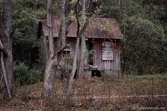 Abandoned Mountainside Cabin - The Great Smoky Mountains