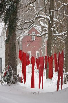 Clothes Line in the winter Cute for xmas