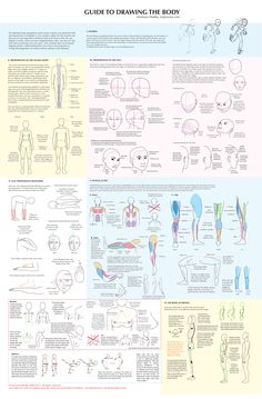 Big Guide to Drawing the Body by majnouna.deviantart.com (http://majnouna.deviantart.com/art/Big-Guide-to-Drawing-the-Body-15014442)     ★ || CHARACTER DESIGN REFERENCES™ (https://www.facebook.com/CharacterDesignReferences & https://www.pinterest.com/characterdesigh) • Love Character Design? Join the #CDChallenge (link→ https://www.facebook.com/groups/CharacterDesignChallenge) Share your unique vision of a theme, promote your art in a community of over 50.000 artists! || ★