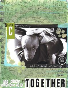 pet scrapbooking layout
