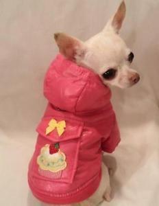 Pupcakes Dog Jacket Dog Dog Coat Chihuahua Yorkie Dog Clothes Pet Clothes M ORL | eBay