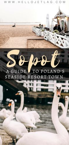 Sopot is a popular seaside resort town in Northern Poland famous for it& he. Backpacking Europe, Europe Travel Tips, Travel Usa, Travel City, Travel Articles, Travel Abroad, European Travel, Travel Guides, Estonia Travel