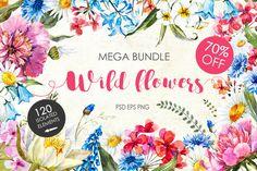 "Watercolor bundle ""WIld flowers"" by Lembrik's Artworks on @creativemarket"
