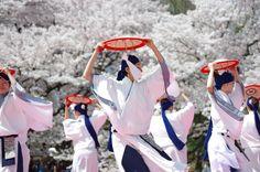 京都さくらよさこい2015一日目その10(産土~うぶすな~その2) : ヒロパンの天空ウォーカー