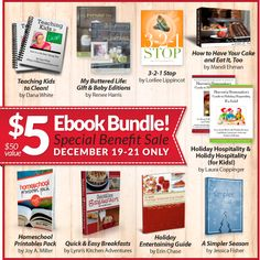 Through Friday, December 21, you can get a great deal on ebooks and at the same time help a homeschool family who has taken on the care of ten additional children, ages 2-16, who need a safe and loving home.