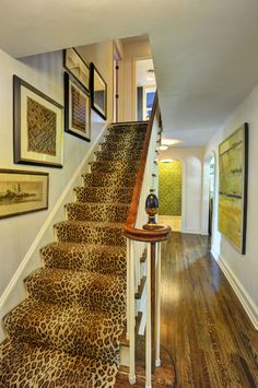 51 Best Animal Print Carpet Images Leopard Carpet
