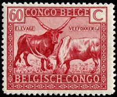 Herd of Cattle? Bulls, Cows and Calves on Stamps - Page 6 - Stamp Community Forum Congo Free State, World Wild Life, Rd Congo, Belgian Congo, Old Coins, Vintage Stamps, Mail Art, Stamp Collecting, Poster