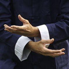 Tai Chi hand pose