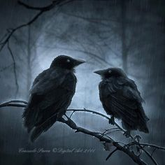 Dark Gothic Digital Artworks Consuelo Parra na Stylowi.pl