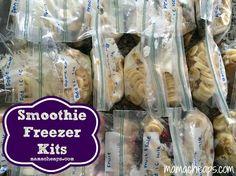 MamaCheaps.com: Smoothie Freezer Kits (with 4 Recipes!)