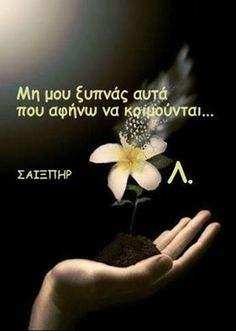 ! Words Quotes, Wise Words, Life Quotes, Sayings, Special Words, Special Quotes, Famous Quotes, Best Quotes, Greek Words