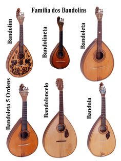 The Family of Mandolin and its history – Musical instruments Indian Musical Instruments, Music Instruments, Portuguese Culture, Music Worksheets, World Music, Music Lessons, Music Education, Music Stuff, Ukulele