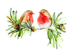 Xmas. Christmas painted robins - represented by Bright Art Licencing