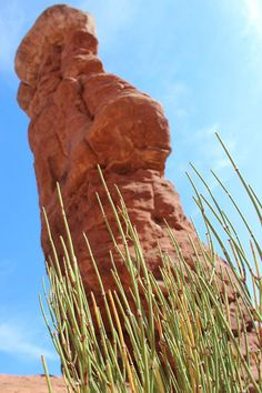 Planning a trip to Arches National Park? Check out these tips from NPCA!