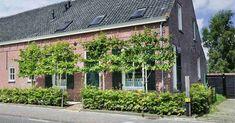 Garden Projects, Garden Ideas, Garden Inspiration, Holland, My House, Facade, Pergola, New Homes, Sweet Home