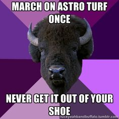 Oh, but some of those little turf turds come out of your shoe, and then they multiply and migrate all over your house.